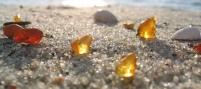 Что такое янтарь? Легенды, происхождение и разновидности